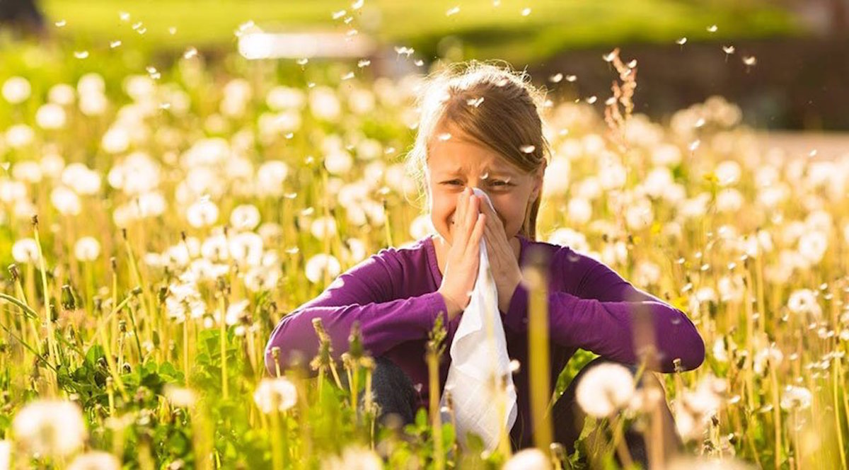 Hay-Fever-Symptoms