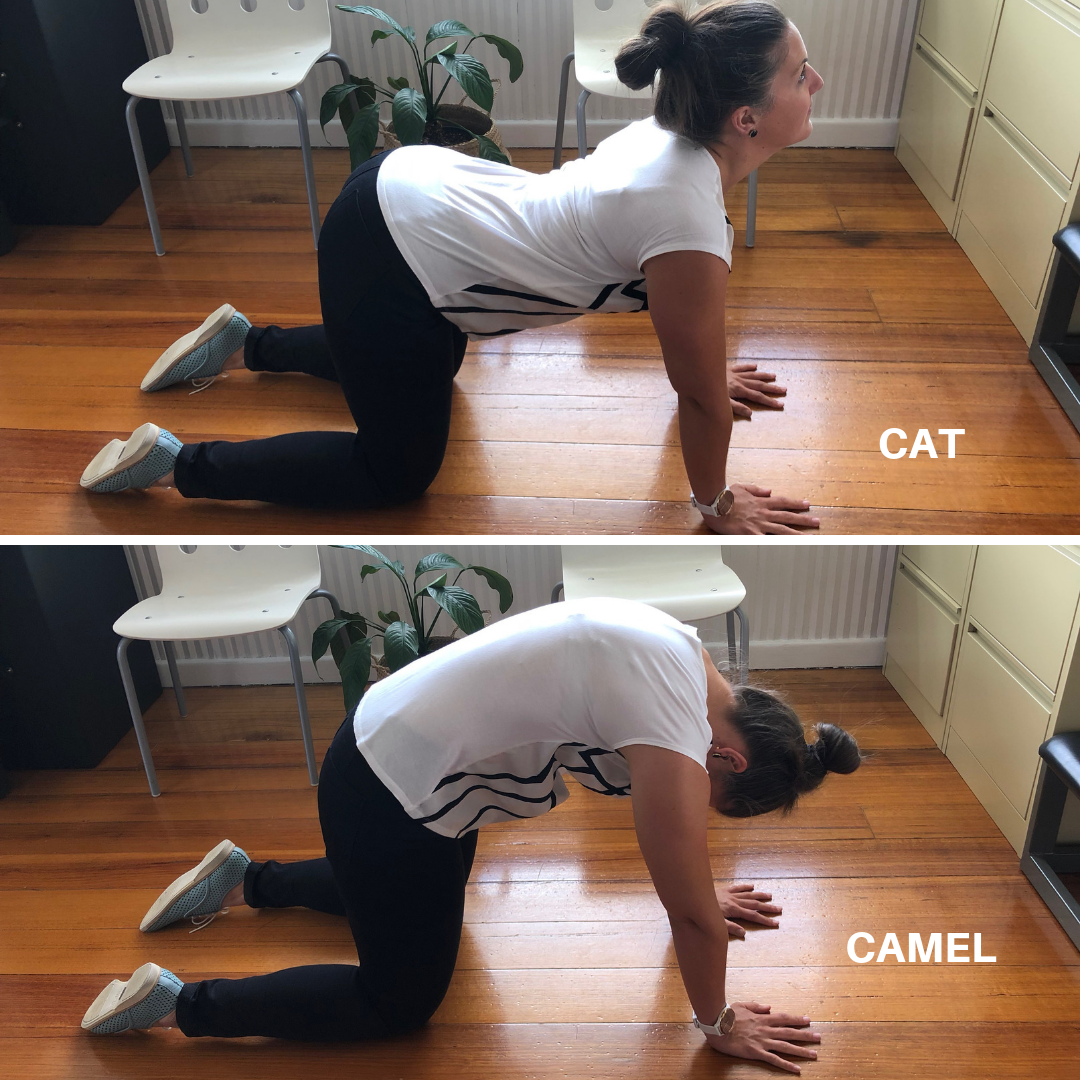 Images of a woman performing the Cat Camel Thoracic Mobility Exercise